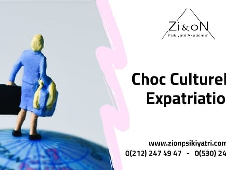 Choc Culturel En Expatriation